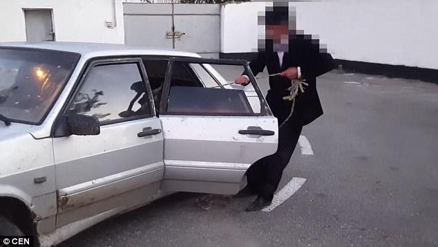 Nhóm trộm ăn cắp bò nặng 1 tấn rồi nhét luôn vào ghế sau ô tô - Ảnh 2.
