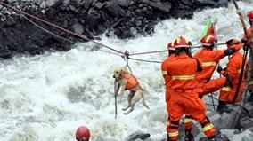 Lở đất ở Tứ Xuyên: Đội cứu hộ chạy đua với thời gian tìm người mất tích