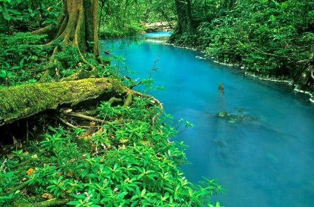 Dòng sông mang màu xanh kỳ lạ