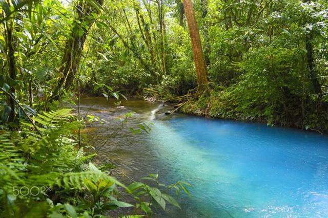 Màu nước xanh chỉ kéo dài chừng 14 km
