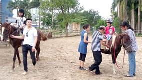 Cưỡi ngựa - Thú chơi mới tại Hà Nội