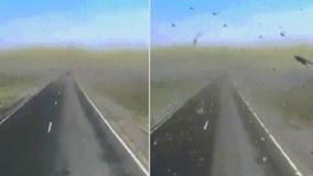"""Chạy xe giữa """"bão"""" châu chấu kinh hãi ở Nga"""