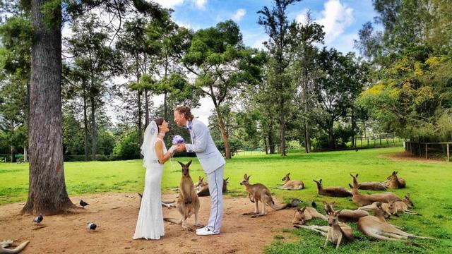 Làm đám cưới ở xứ sở chuột túi