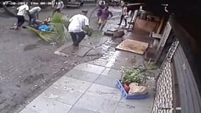 Đang đi giữa đường, nữ MC bị cây cọ cướp mạng sống