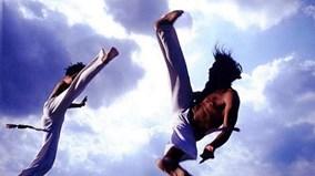 So sánh cú đá của 4 môn võ Capoeria, Karate, Muay Thái Lan và Teakwondo.