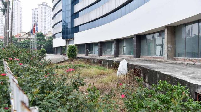 Bên trong khuôn viên bệnh viện, cỏ dại mọc um tùm.
