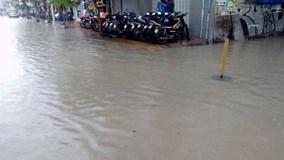 TP HCM: Đường ngập, cây đổ vì mưa lớn