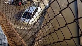 Tài xế lái ô tô thách thức dòng lũ cao ngất gây kinh ngạc