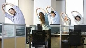 8 bài tập lưng cực tốt cho dân văn phòng thực hiện ngay tại bàn làm việc