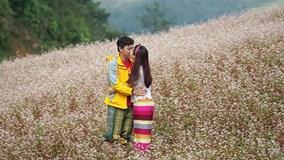 9X quỳ gối cầu hôn bạn gái giữa cánh đồng hoa tam giác mạch