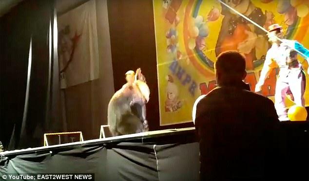 Đoạn video clip được ghi hình bởi một khán giả tại thành phố Syktyvkar (Nga).