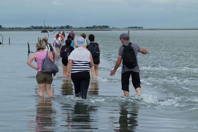 Khi thủy triều rút, du khách có thể lội nước tới đảo