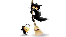 5 'đại ca' mèo sợ rúm người trước 1 con chuột nhãi