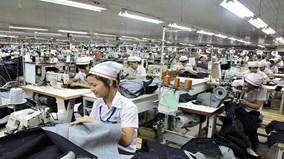 TP.HCM: phát hiện 350 người có việc làm vẫn nhận bảo hiểm thất nghiệp