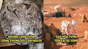 6 khám phá không thể tin nổi về thế giới