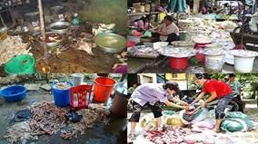 Lo ngại vệ sinh ATTP, người dân đổ xô tìm mua thực phẩm sạch