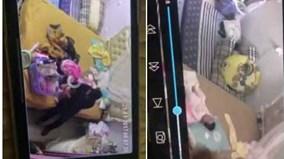 Bé gái hơn một tháng tuổi bị người giúp việc hành hạ dã man
