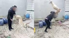 Chủ cầm chân quật chó đến chết gây phẫn nộ ở Trung Quốc