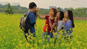 Hoa cải nở rộ trong nắng đông, giới trẻ Hà thành nô nức đi chụp ảnh