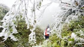 Vùng núi phía bắc rét đậm, đỉnh Mẫu Sơn rét 3,8 độ C