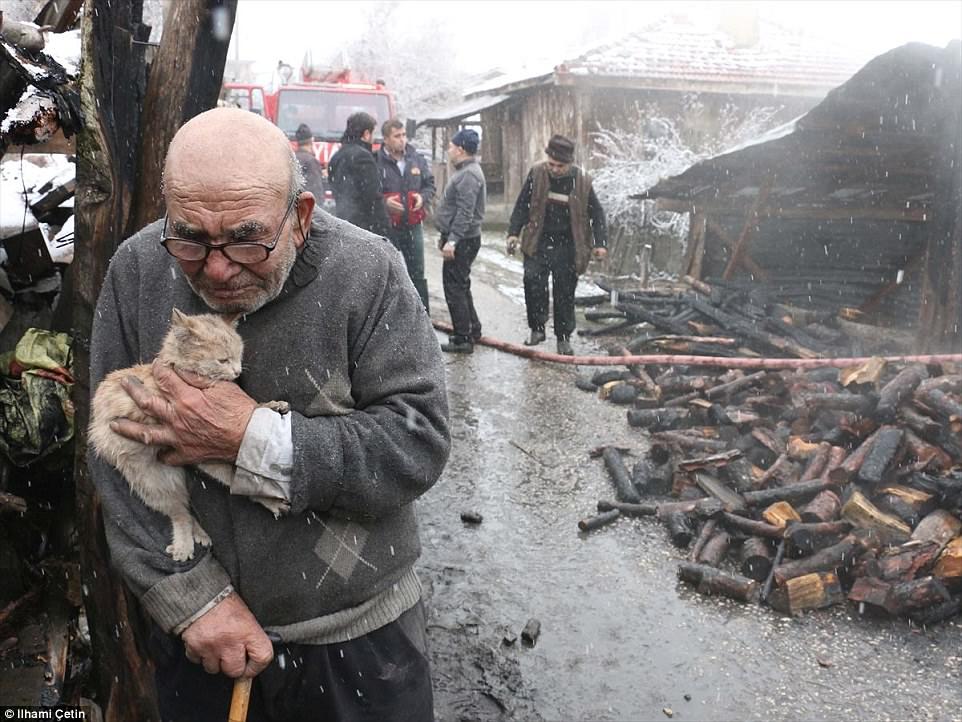 Clip: Cụ ông 83 tuổi rơi nước mắt khi đoàn tụ với mèo cưng sau đám cháy thiêu rụi căn nhà-2