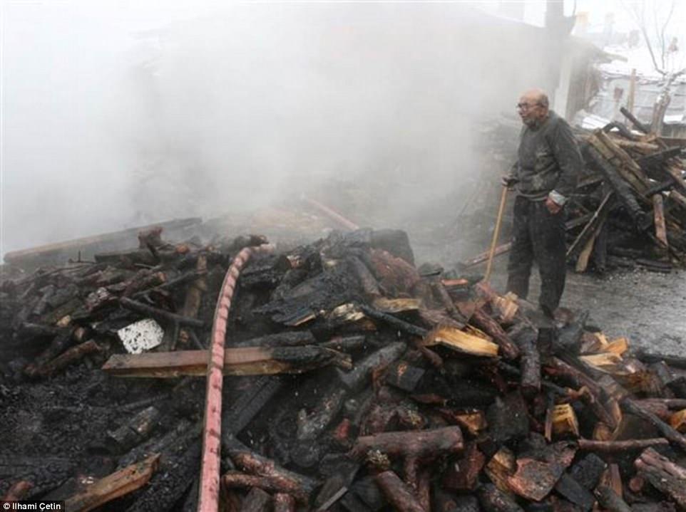 Clip: Cụ ông 83 tuổi rơi nước mắt khi đoàn tụ với mèo cưng sau đám cháy thiêu rụi căn nhà-1