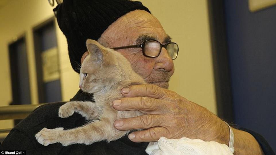 Clip: Cụ ông 83 tuổi rơi nước mắt khi đoàn tụ với mèo cưng sau đám cháy thiêu rụi căn nhà-3