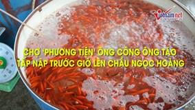 Chợ cá lớn nhất Hà Nội tấp nập trước giờ ông Công, ông Táo chầu trời