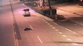 Chồng say rượu, vợ lái ô tô chở rơi ra ngoài mà không biết