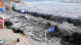 'Vạn Lý Trường Thành' có khiến người Nhật an lòng trước thảm họa sóng thần?