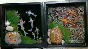 Chàng trai Sài thành vẽ tranh cá 3D sống động như thật