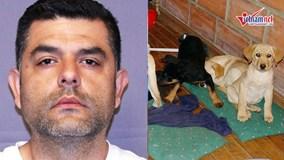 Bác sỹ thú y tàn độc mổ bụng chó, nhét heroin vào để buôn lậu
