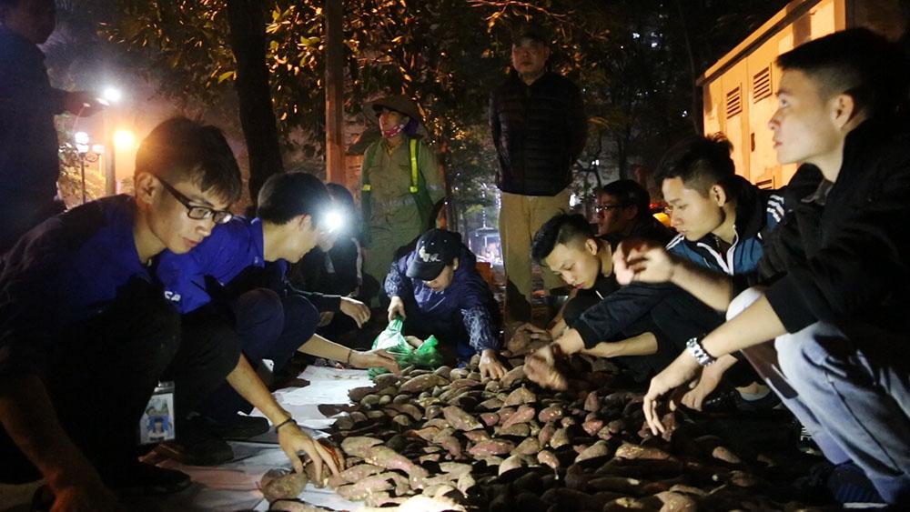 Cộng đồng tình nguyện ''giải cứu'' khoai lang cho nông...