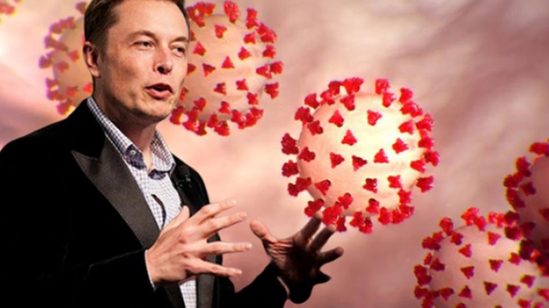 Covid-19: Mỹ lập kỷ lục mới, tỷ phú Elon Musk dương...