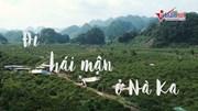 Cảnh ngậm ngùi thu hoạch sớm ở thung lũng mận đẹp nhất Mộc Châu