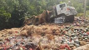 Xe tải chở hơn 1,5 tấn dưa hấu lật thảm khốc trên đèo Tà Cơn