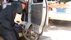 Hổ mang chúa nọc độc chết người ẩn trong xe khiến tài xế chết khiếp