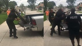 Cá sấu bị trói chặt vẫn tung đòn hiểm khiến cảnh sát choáng váng