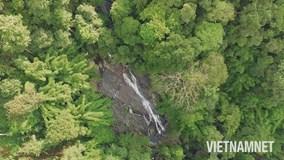 #LET'SGO: Tới Lâm Đồng hoang sơ chinh phục thác 7 tầng trong truyền thuyết