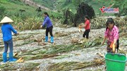 Xót cảnh em bé Hà Giang đi mót từng bắp ngô sau lũ