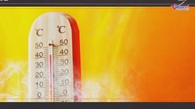 Thế giới 7 ngày: Nắng nóng trở thành 'kẻ sát nhân hàng loạt'