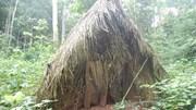 Hình ảnh hiếm về người đàn ông cuối cùng của bộ lạc Amazon
