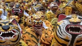 Hàng trăm người Mexico hóa trang thành hổ ra đường cầu mưa