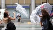 Nhân viên Nhật 'chống lại' cơn bão Jebi để giao hàng đúng giờ