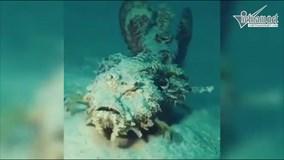 Loài cá đi bộ kỳ dị dưới biển sâu