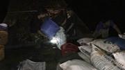 Hàng tấn cá lại chết ở hồ Tây, công nhân vớt xuyên đêm