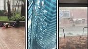 Những hình ảnh không tưởng  ở Hong Kong dưới sức tàn phá của bão Mangkhut
