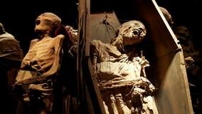 Khám phá những bảo tàng kinh dị, ám ảnh những vị khách yếu tim