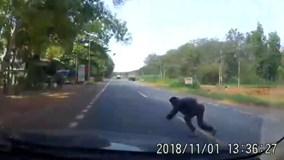 Người đàn ông bất ngờ lao thẳng vào đầu ô tô tự tử