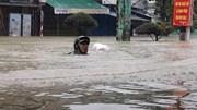 Quảng Nam mưa ngập: Người dân 'Bơi' đi lánh nạn